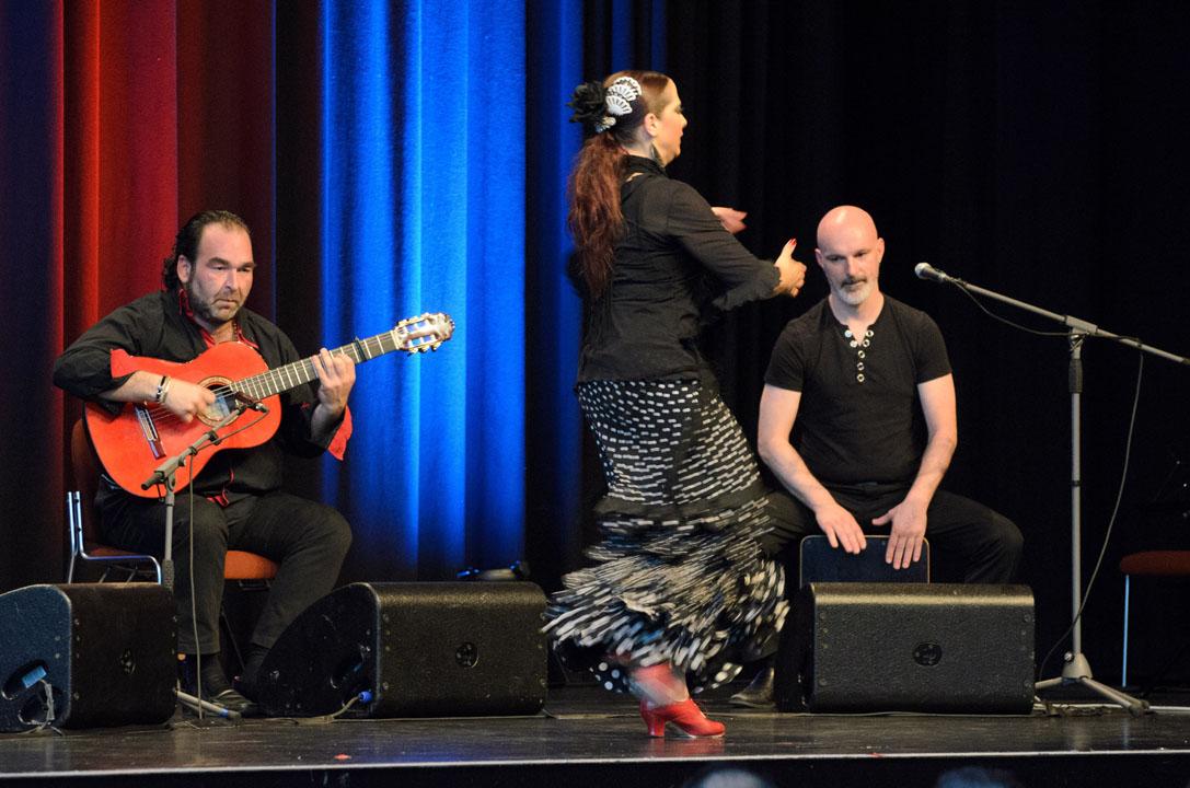 Galerie – Internationale Gitarrenfestspiele Nürtingen